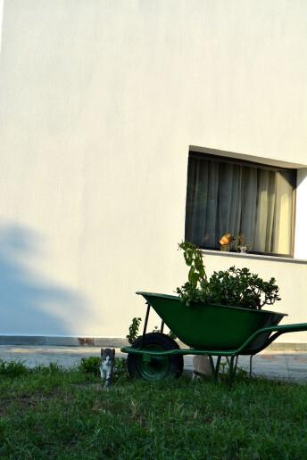 single house-03